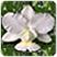 promotion Royalgardenvillas.com, Royalgardenvillas.com promotion