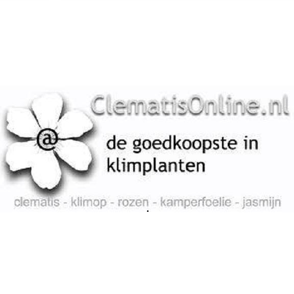 Clematisonline.nl