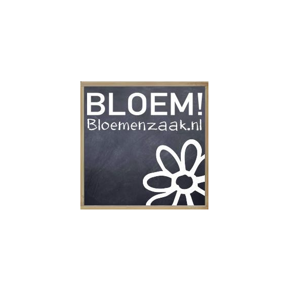 Bloemenzaak.nl