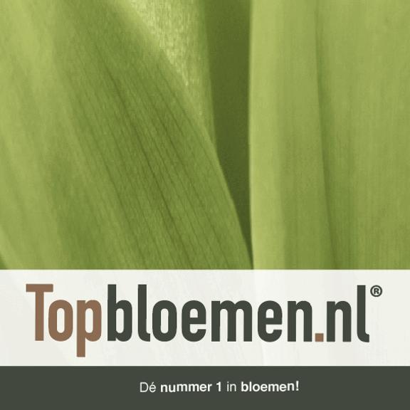 Korting bij Topbloemen.nl