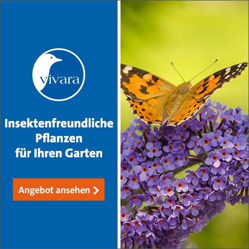 Pflanzen | Vivara.at