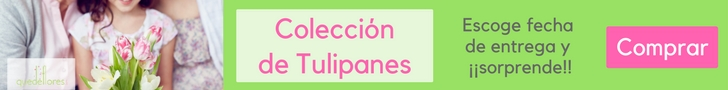ALGUNAS CURIOSIDADES DE LOS TULIPANES 3
