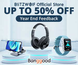 Blitzwolf Official Store feedback
