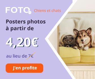 Posters photos - promos juin juillet 2021