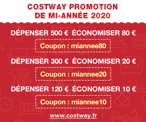 2020 Black Friday réduction de 10% 300-250