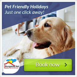 Holiday Homes with pets allowed