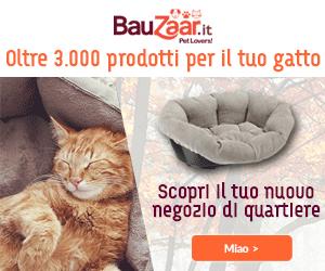 Su Bauzaar.it troverai oltre 3.000 prodotti per il tuo gatto. Scopri il tuo nuovo negozio di quartiere