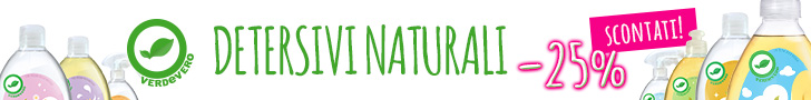 detersivi naturali detergenti ecologici acido citrico biodizionario