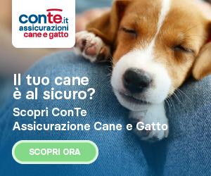 ConTe CaneGatto_Generico