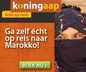 Koningaap - Marokko