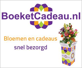 Klik hier voor de korting bij Boeketcadeau.nl