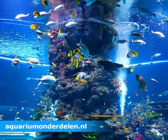 Klik hier voor de korting bij Aquariumonderdelen