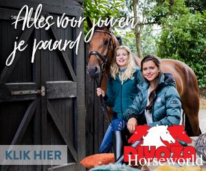 Divoza Horseworld, alles voor jou en je paard