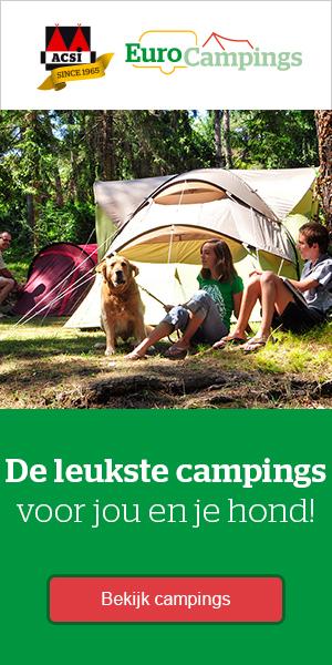 De Leukstre campings voor jou en je hond