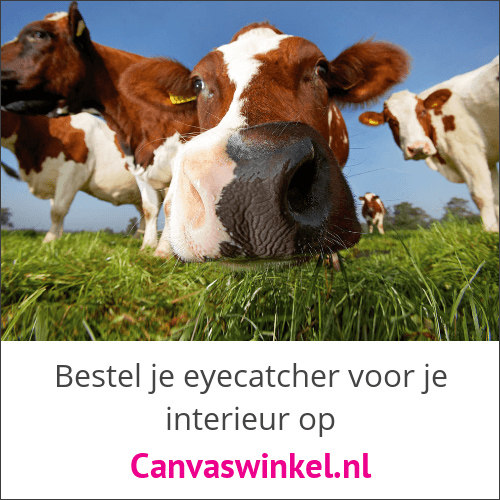 Klik hier voor de korting bij Canvaswinkel.nl