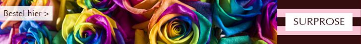 goedkope rozen en bloemen bestellen