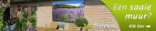 De oplossing voor die kale muur of schutting : Tuinposter.nl
