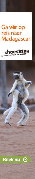 Shoestring - Madagascar