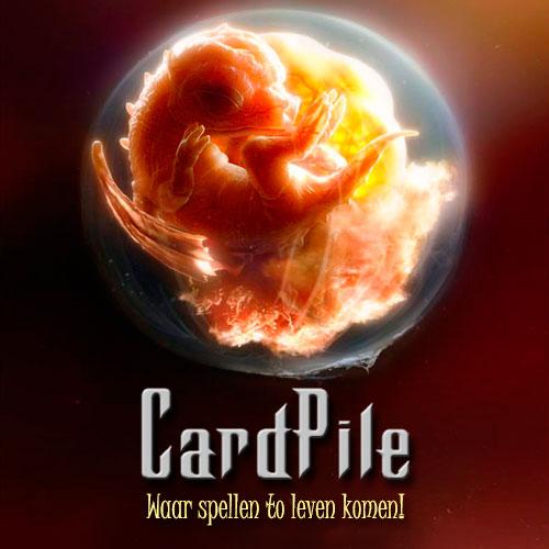 Klik hier voor de korting bij Cardpile.nl