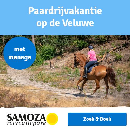 Paardrijvakantie op de Veluwe