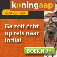 Koningaap - India