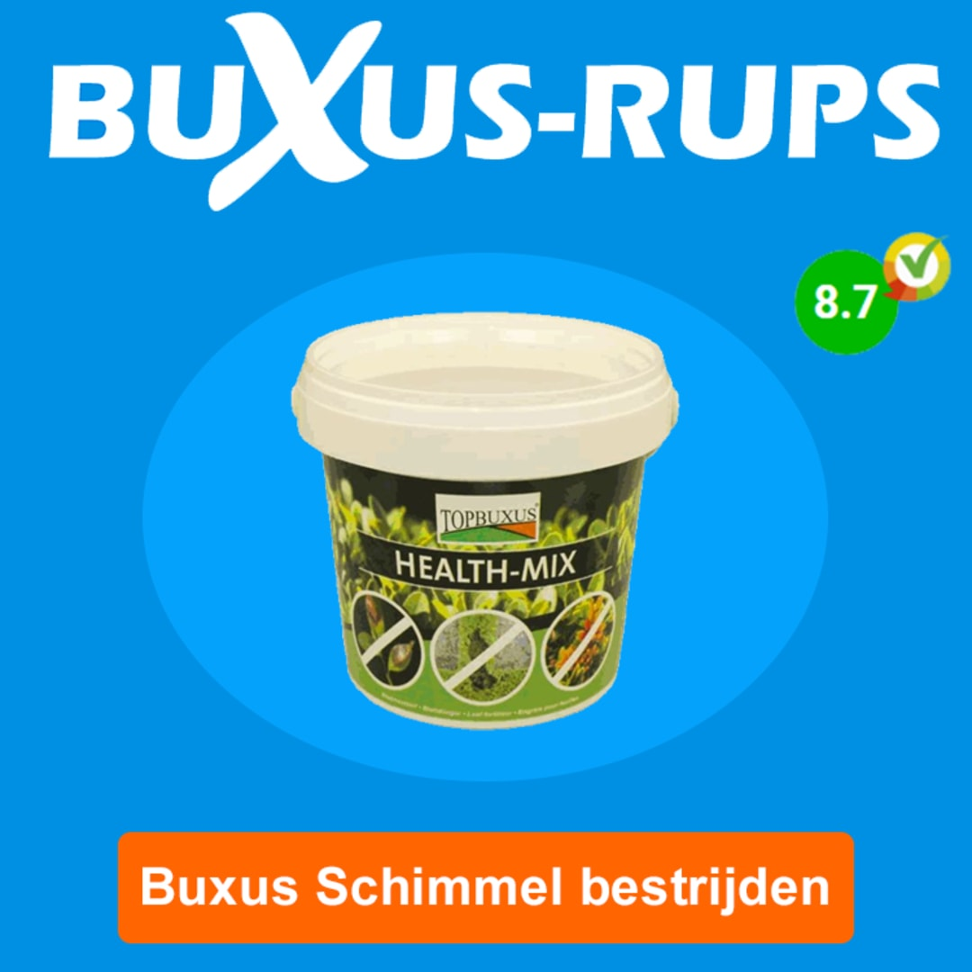Klik hier voor de korting bij Buxus-rups