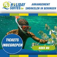 Dankzij ons arrangement heb je recht op 2u snorkelplezier, inclusief snorkeluitrusting. Uitrusten kan achteraf met een gratis drankje in de duikersbar of brasserie. Een onvergetelijke, unieke ervaring voor de hele familie!