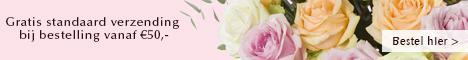 surprose rozen bestellen