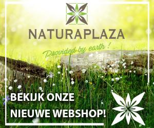Alepeo zeep met 20% Laurierolie | Steviahouse.nl