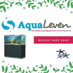 Klik hier voor de korting bij Aqualeven