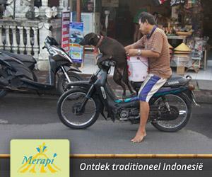 Merapi Tout & Travel