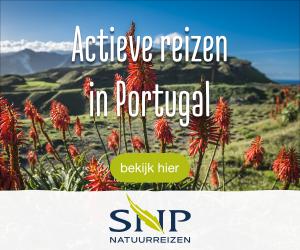 SNP vakantie Portugal