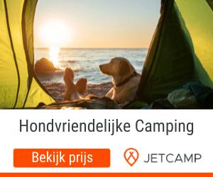 Hondvriendelijke camping