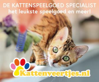 De kattenspeelgoed specialist