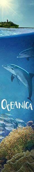 Oceanica 120x600