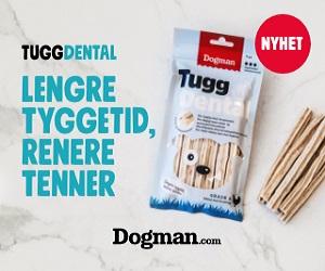 Hundepoter - Størst utvalg i hundeutstyr!